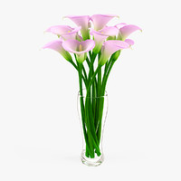 Calla Flower in Vase 5